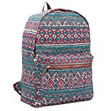 15 COLOURS Canvas Backpack Rucksack - Girls Ladies Womens Casual Daypack Bags - 20 Litre Medium School Hand Luggage Size Backpacks - Classic Settlement Bag - 39cm x 32 x 16 QL716M (Red Inca)