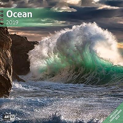 Ocean 2019, Wandkalender / Broschürenkalender Im Hochformat (Aufgeklappt 30X60 Cm) - Geschenk-Kalender Mit Monatskalendarium Zum Eintragen