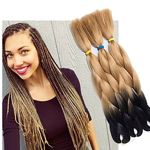6 Packs Eunice Hair Jumbo Flechten Hair Extensions Colorful Kunsthaar Kanekalon Haar für Heimwerker Crochet Box Zöpfe Ombre 2Tone Color 100 g/pcs 61 cm (T27) - T27 Box