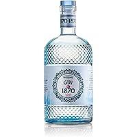 Distilleria Bertagnolli Gin 1870 Premium Raspberry Dry Gin - 700 ml