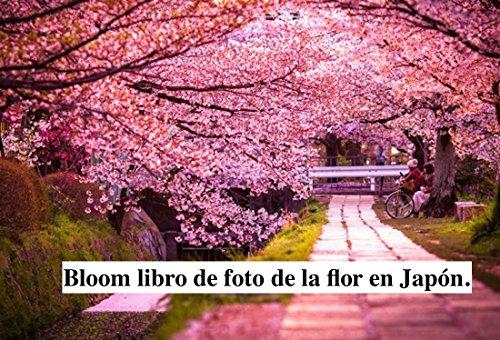 Bloom libro de foto de la flor en japón. EPUB Descargar gratis!
