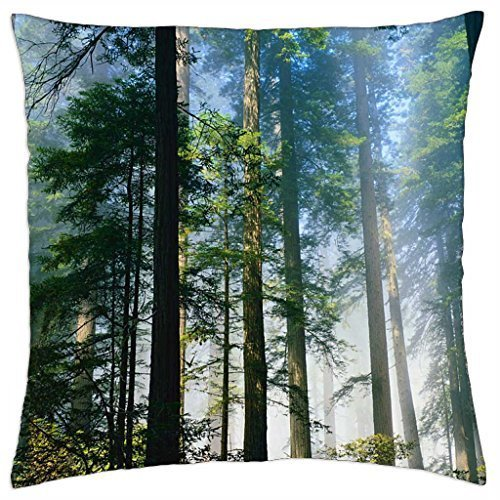 Mgla w lesie - Throw Pillow Cover Case (16