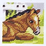 Orchidea Stickpackung für Kinder halber Kreuzstich Pferd 9603