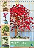 Bonsai: Gartenkunst im Kleinen (Tischkalender 2017 DIN A5 hoch): Japanische Gartenkunst Bonsai (Monatskalender, 14 Seiten ) (CALVENDO Orte)