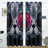 JSTEL Abstrakt Nebel Universe Starry Katze Cool Sonnenbrille Vorhänge Panels Verdunklung Blackout Tülle Raumteiler für Terrasse Fenster Glas-Schiebetür Tür 139,7x 213,4cm, Set von 2