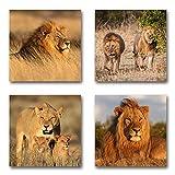 Löwen Afrika - Set A schwebend, 4-Teiliges Bilder-Set je Teil 29x29cm, Seidenmatte Moderne Optik auf Forex, UV-Stabil, Wasserfest, Kunstdruck für Büro, Wohnzimmer, XXL Deko Bild