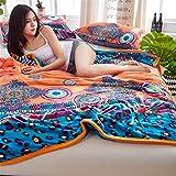 WANMT Wohn Kuscheldecken Decke Koralle Fleece Flanell Decke Winter Dicke Bett Bett Schlafsaal Student dünnen Abschnitt Nickerchen kleine Decke, 200X230cm