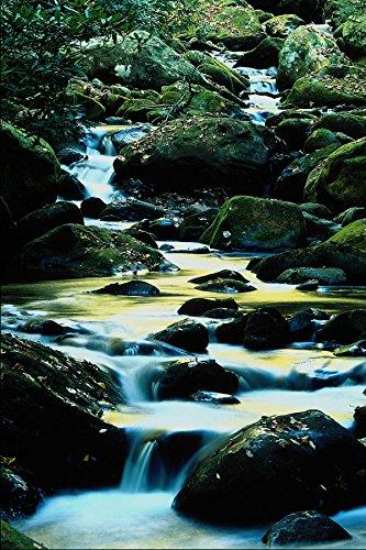 680085-roaring-fork-trail-smoky-mountain-national-park-tn-a4-photo-poster-print-10x8