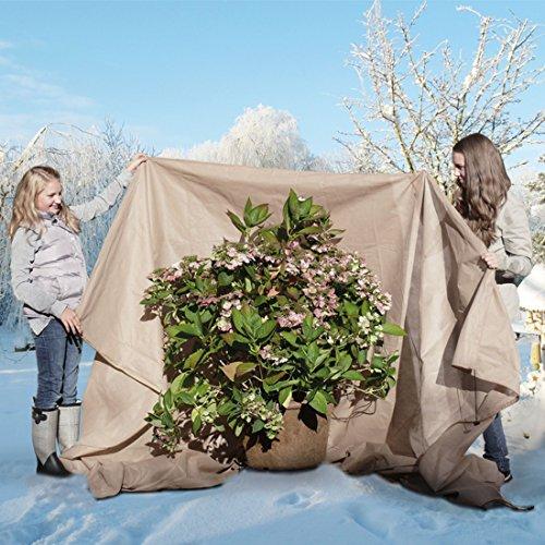 Winterschutzhaube Kübelpflanzensack, beige,