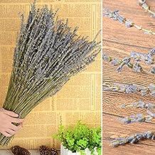 toyfun tallos con flores secas ramo lavanda ramo boda flores manualidades decoración regalo 350-380pcs