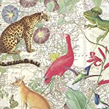 EXOTIC WORLD Animals Map Jaguar HummingbirdIbis Ibis Kangaroo Explorer IHR Paper Lunch Napkins 20 in pack 3 ply 33 cm square