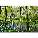 Fototapete WALD Vlies PREMIUM PLUS 400x280 cm Wand Foto Tapete Wand Bild Vliestapete - BEAUTIFUL CREEK - Wald Bäume Natur - no. 256