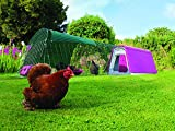 Casa per galline Eglu Go con recinto da 2 metri - Verde foglia