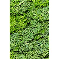 Kale Curly Leaves 100g