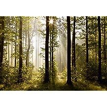 AG FTS 0181 diseño papel pintado para pared-partes fotomurales bosque mañana