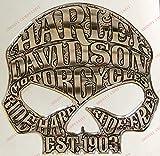 Stemma logo decal HARLEY DAVIDSON, SKULL WILLIE G, adesivo resinato, effetto 3D. Per SERBATOIO o CASCO. Colore: argento