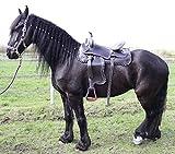 Campale Westernsattel Dallas 17 Zoll Echt Leder Sattel Pferdesattel Semiquarter