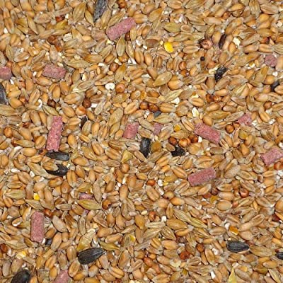 25 kg Dawn Chorus Original Flavour Wild Bird Seed Mix by Twootz