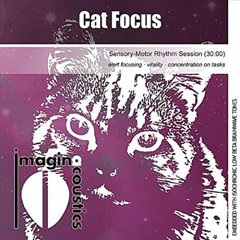 Cat Focus (Sensory-Motor Rhythm Session)