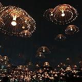 LXSEHN LED Beleuchtete Quallen-Lampen-Faser-Farbwechsel-Lampe, Hotel-Quadrat-im Freien Wasserdichte Landschafts-Schilf-Lichter Pendelleuchte Lampenlaternen (Farbe : 100cm)