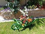Große Offene Holz-Schubkarre, Gartendeko Karre zum Bepflanzen, Blumentöpfe, Pflanzkübel, Pflanzkasten, Blumenkasten, Pflanzhilfe, Pflanzcontainer, Pflanztröge, Pflanzschale, Schubkarren 120 cm HSOF-120-GRASGRÜN Blumentopf, Holz, No-1 grasgrün amazon grün dunkelgrün mit Lasur lasiert auf Wasserbasis Pflanzgefäß, Pflanztöpfe Pflanzkübel