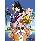 Abystyle Abysse Corp _ ABYDCO392Dragon Ball–Poster dB/Kame Team (52x 38)