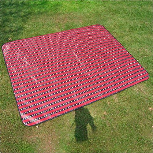 wysm Tappetino da pic-nic 210 * 150 centimetri tende impermeabile portatile a prova di umidità tappeto ispessimento prato campeggio esterno picnic portatile esterno portatile ( Colore : HW01 ) HW03