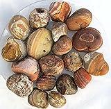 Achatknollen, Rohachat, Achat aus Brasilien 0,5 kg (1 kg = 16,40 EUR)
