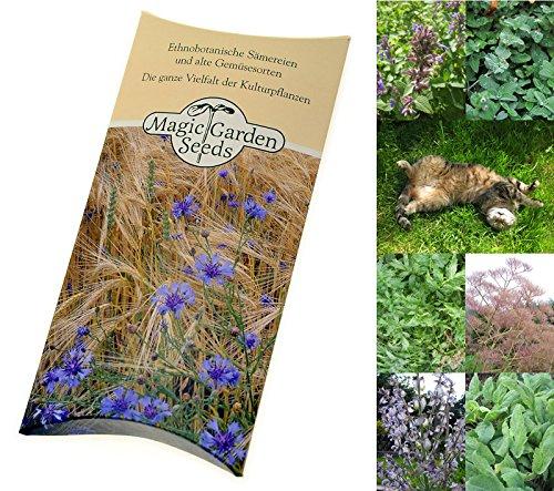 Saatgut Set: 'Katzenkräuter', 3 Pflanzen die ihre Katze lieben wird, Samen in schöner Geschenk-Verpackung