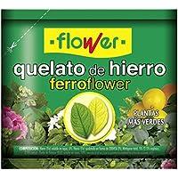 Flower 15506 – ferrotrene (quela