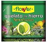 Flower 15506 - ferrotrene (quelato Hierro), 30 gr