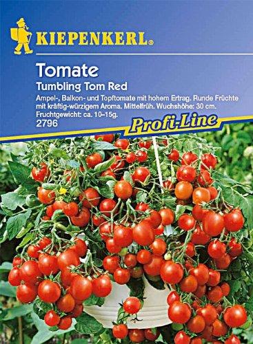 tomaten-ampeltomaten-hangetomate-tumbling-tom-red-rot
