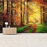 azutura Sonnenlicht Herbst Waldweg Wandbild Holz Bäume Foto-Tapete Natur Dekor Erhältlich in 8 Größen Riesig Digital