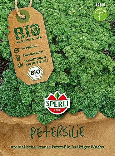 Petersilie - Bio-Petersilie, kraus Mosskrause 2 / Grandeur - Bio-Saatgut von Sperli-Samen