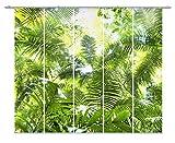 emotiontextiles,Mehr Unter FERNWEHKOLLEKTION,10686,Flächenvorhang Dschungel Grün Landschaft 5er-Set,Foto,Schiebevorhang Blickdicht 85%, Digitaldruck Rückseitig prozentual sichtbar