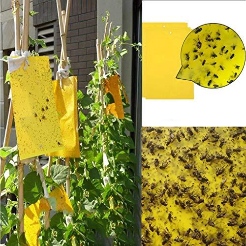 Wokee 3 Stücke Doppelseitige Gelbe klebrige Fallen für Pflanzen-Insekt Wie Pilz-Mücke, Whitefly, Starke Fliegen Fallen Bugs Sticky Board Fang Blattlaus Insekten Pest Mörder