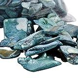 Dadeldo Muschel Splitt Streu Deko grob 200g Maritim Beach Design (Aqua blau) - 2