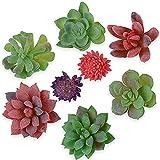 8 Stück Realistische Künstliche Sukkulenten Kunstpflanze Kunstblume klein für Party, Hochzeiten, Zuhause, Garten und Büro Deko
