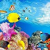 SODIAL Aquarium Papier de Fond Image HD 3D tridimensionnel Fond d'ecran de Poissons Arriere-Plan Peinture Double Face Aquarium decoratif Autocollant de Reservoir de Poissons(30 * 42 cm)