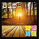 ArtzFolio Evening In The Woods Printed Bulletin Board Notice Pin Board cum Black Framed Painting 16 x 16inch