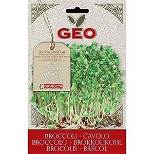 Geo Cavolo Broccolo Semi da Germoglio, Marrone, 12.7x0.7x20 cm
