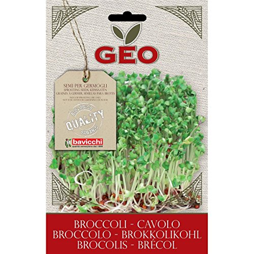 Geo VCB0503 Cavolo Broccolo Semi da Germoglio, Marrone - Amazon Semi