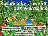 Serra botaniche gioielli del Amazonas