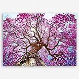 ge-Bildet® hochwertiges Leinwandbild Pflanzen Bilder
