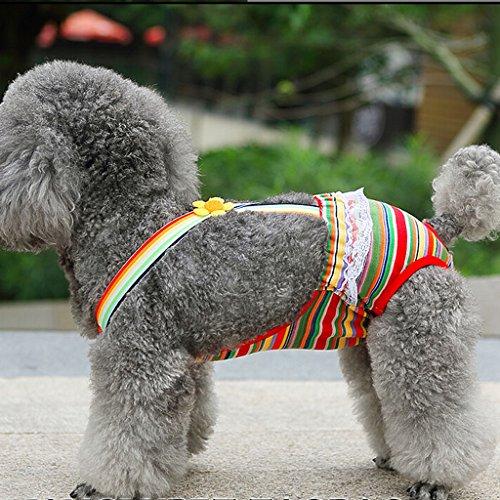 Zoom IMG-3 generic cane femmina pet strisce