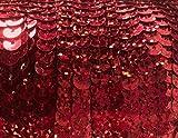 90 Meter langes, farbiges Paillettenband mit Hologramm-Effekt auf einer Rolle aufgewickelt - 6 mm breites Bortenband - Glänzende Paillettenbänder für Bastelprojekte, Tanzbekleidungen uvm. (Rot Holo)