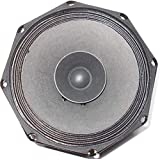 Sweton Speaker for Mall, Restaurant and Pub (8 inch 40 watt 8 ohm)