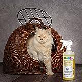 Geruchsneutralisierer Spray gegen Gerüche von Katzen-Urin, Hund & Nager Gerüche | 40ml Konzentrat ergibt 1-2 Liter gebrauchsfertigen Geruchskiller / Geruchsentferner / Bio Reiniger - 8