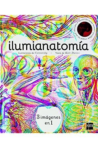 Ilumianatomía