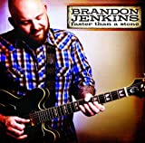 Songtexte von Brandon Jenkins - Faster Than a Stone
